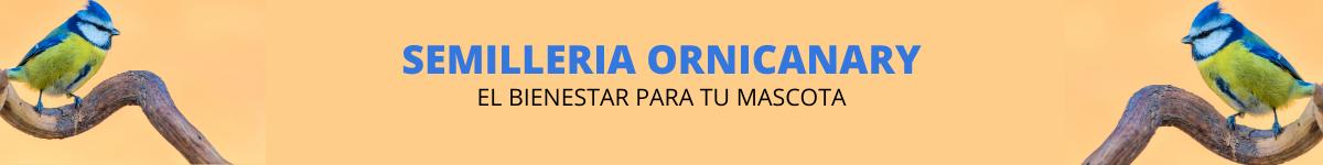 Semilleria Ornicanary